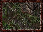 Ser_Friedhof.jpg